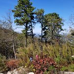 ภาพถ่ายของ Pilot Mountain