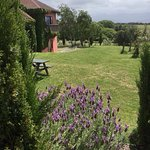 Highfield TerraVin Cellar door and Vineyard Restaurant Foto