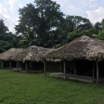 Tented Cottages