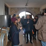 Cellar Guided tour