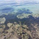 Photo of Blue Corals Beach Resort