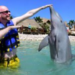 Dabbing with the dolphin