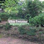 Foto de The Trevene Hotel