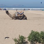 Photo of Essaouira Beach