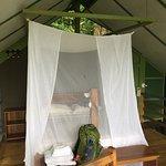 Foto de Lookout Inn Lodge