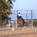 Royal Carriage Club Riding School Foto
