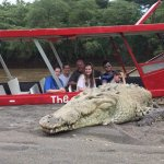 Big crocodiles are easy to see during our Puntarenas Highlights Tour
