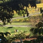 Chateau Chantal Winery and Inn Bild