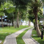 Garden Views and path to the beach front