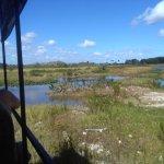 Photo of Billie Swamp Safari