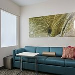 Photo of SpringHill Suites Chicago Schaumburg/Woodfield Mall