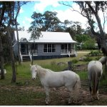 Relax on your private balcony in the Coolibah Cottage with our farm animals