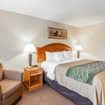 Comfort Inn & Suites Bothell - Seattle North Foto