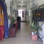 Hotel Ayalamar Manzanillo