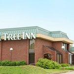 Foto de Pear Tree Inn Rolla