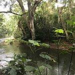 Photo de Kayak Adventures