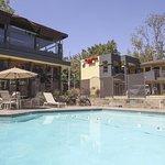 Foto de GreenTree Pasadena Inn