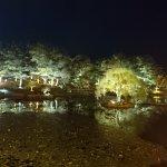 night scene at Anapji pond