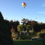 Hot Air Balloons flying over our garden area during WW Balloon Stampede