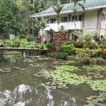 Philippine Eagle Centre Foto