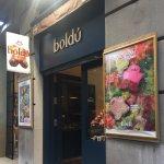 Photo of Boldu