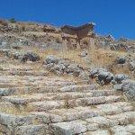 "Street ascending transversally to the ""decumanus"", near the so-called ""gymnasium"""