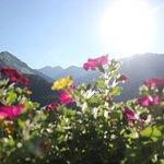 Alpenperle Aussicht von Zimmer / App. / FeWo