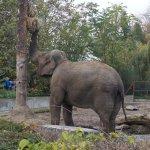 Photo of Wroclaw Zoo & Afrykarium