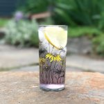 Locally made Berkshire glassware celebrating the native flora & fauna of the area