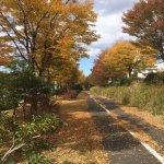 Foto de Stake Miya Tsukubagakuenten