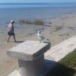 Low tide, great for walking