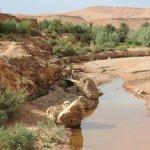 Photo of Adventure Morocco Tours