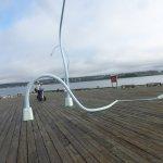 Segway Nova Scotia Photo