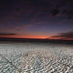 Photo de Pointe Estero Beach Resort