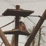 Photo de Jersey Zoo