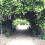 Queenstown Garden Foto