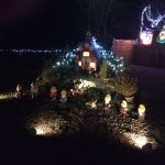 Xmas lights at Vale of Pickering