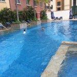 their pool
