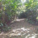 Foto de La Mesa Eco Park