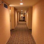 Beautiful hallway on the 14 floor!