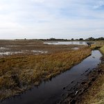 Bilde fra Monomoy National Wildlife Refuge