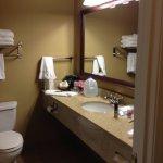 Nice big mirror and massaging shower head