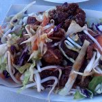 Deep fried pork with salad on rice