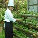 Hotel Organic Farm
