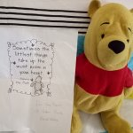Pooh safely back home thanks to the wonderful staff