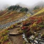 Photo de Skyline Trail
