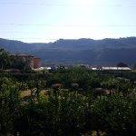 Bilde fra Pizzo Calabro resort