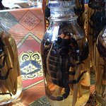 Scorpions in a bottle