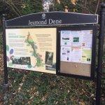 Photo of Jesmond Dene Park