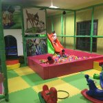 Inside Activity Area, kids can play in this place for 1 hour under due care